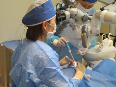 マイクロスコープ 歯根端切除術